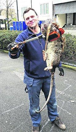 Tony Smith s krysou, která je dle všeho větší než leckteré čtyřleté dítě.