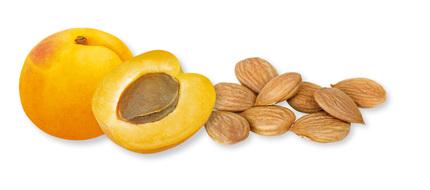 Vitamin B 17, který obsahují například meruňky, nabízí účinnou prevenci proti rakovině.