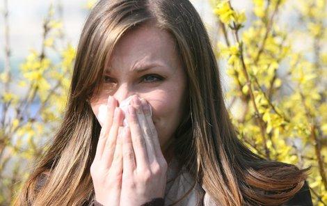 Bez kapesníku by alergici raději neměli vyrážet z domu.