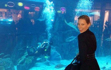 V akváriu ji potápěč lákal za rybami.