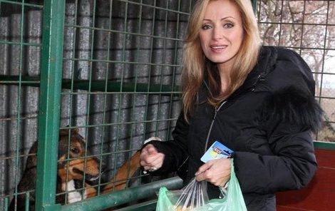 Kateřina Brožová by zpřísnila tresty za týrání zvířat.