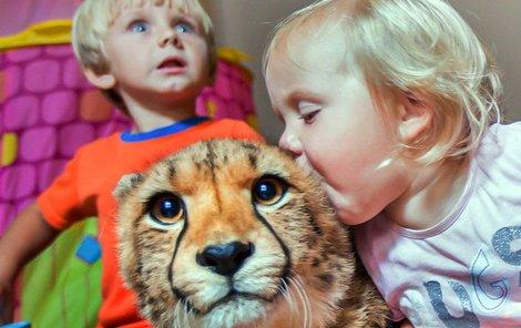 Roční Kayla má za nejlepšího kamaráda malého geparda.