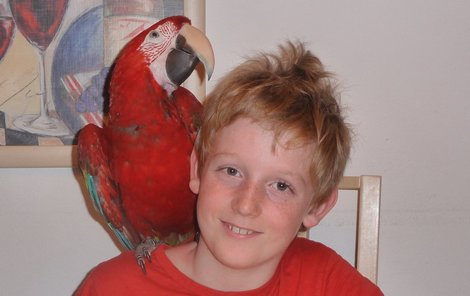 Mikuláš s papouškem – nerozlučná dvojka.
