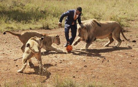 Lvi sice hrají přesilovku, ale člověk to s míčem umí lépe.