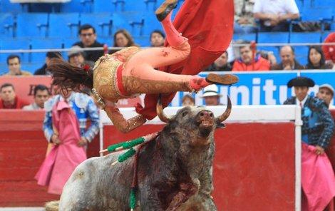 Toreádorka doplatila na týrání zvířat.