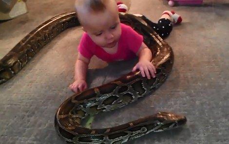 Děvčátko si od malička hrálo s krajtou bez jakékoliv újmy.