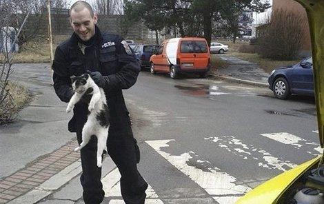 Kočka v motoru ujela 130 kilometrů.
