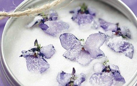 Kandované fialky s moučkovým cukrem