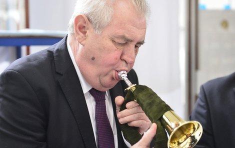 Miloš Zeman a jeho marný boj s polnicí.