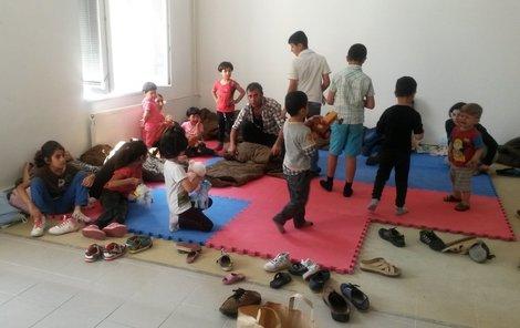 Čtyři syrské rodiny s malými dětmi zadrželi policisté na Šumavě.