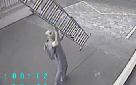 Zloděj si přináší dlouhý žebřík.