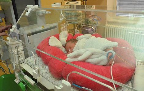 Nedonošené miminko má v novém inkubátoru maximální komfort a jeho vývoj tak probíhá lépe a rychleji.