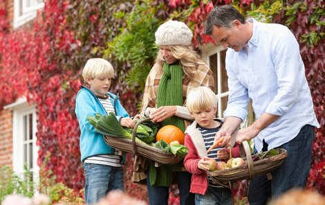 Vyzkoušejte našich pár tipů, jak uskladnit letní a podzimní úrodu!