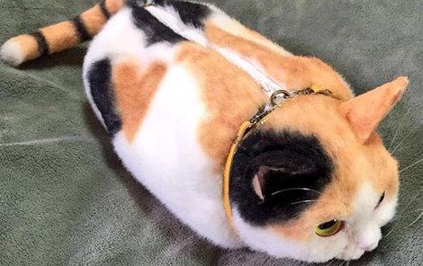 Dámy, chtěly byste si osobní věci cpát do koček?