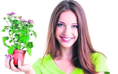 Pokojové rostliny nyní potřebují zvláštní péči.