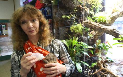 Lucie se o zvířecí miminka vzorně stará.