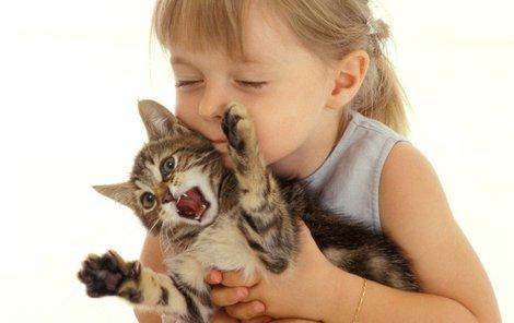 Kočky s námi mluví!