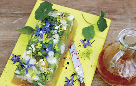 Květinový sulc oživí váš jídelníček.