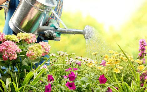V červnu začíná zahrada oplácet péči první úrodou.