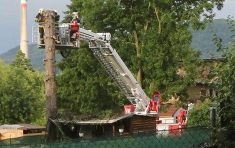 Hasiči odstraňují strom po kterém sjel blesk a zasáhl tři lidi.