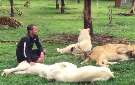 Ošetřovatel Eduardo se věnuje lvům, netuší, že se za ním rozbíhá levhart.