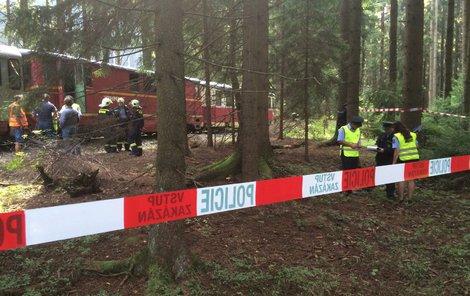 Dva vlaky se střetly na jednokolejce.