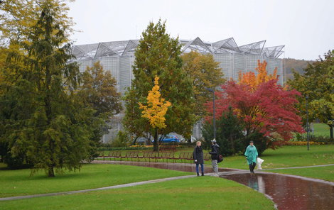 I deštivý podzim má v parku svůj půvab.