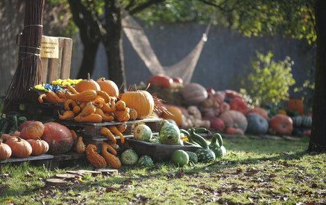 Podzimní prázdniny začínají 26. října.