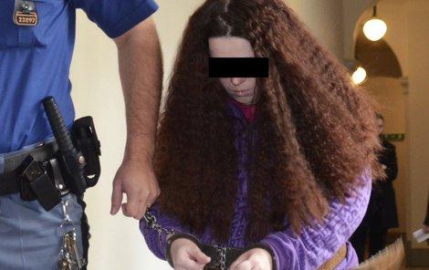 Zdence M. hrozí až 20 let vězení.