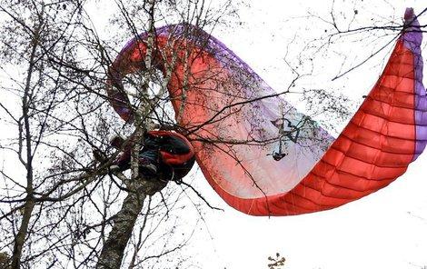 Muž si pobyl na stromě přesně 33 minut od zavolání hasičům.