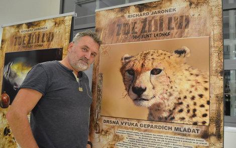 Levhartí sirotek - Richard Jaroněk u plakátu výstavy, na němž je gepard (4). Jediný z trojčat, který přežil. Jejich matka byla zastřelena. Do 1,5 roku byli mladí odchováni v zajetí. Když byli vypuštěni do divočiny, jednoho hned rozdupal buvol a druhého roztrhal levhart.