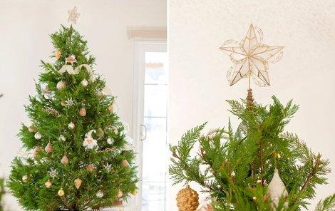 Už víte, jak bude letos vypadat váš stromeček?