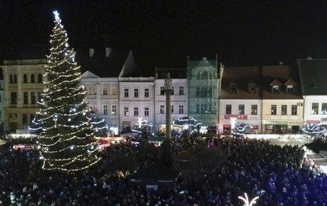 Dvacetimetrový smrk Českolipští slavnostně rozsvítili minulou sobotu.