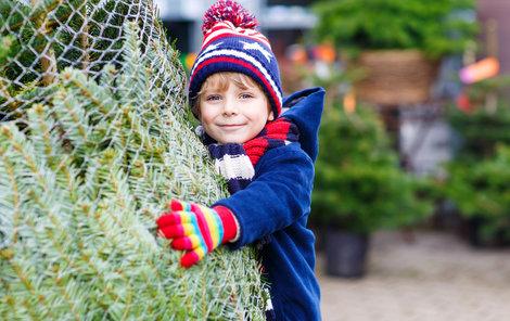 Jak se jednoduše zbavit vánočního stromku