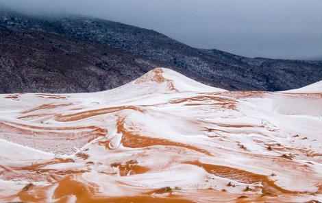 Z tohoto poprašku se pouštní lid těšil jen den, potom sníh roztál...