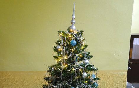 Dárky k Vánocům si neukradli ani kriminálníci ve vazební věznici Pankrác v Praze.