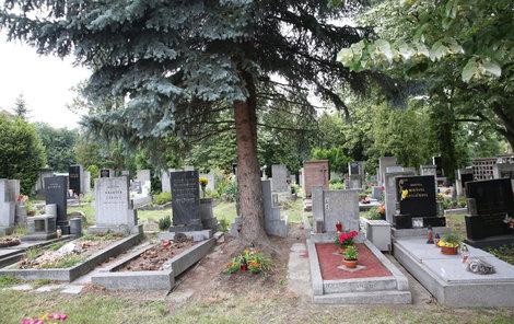 Pozůstalí bývají lehkou obětí nepoctivých pohřebních služeb.