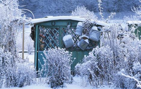 Zdá se, že zimní zahrada spí, ale jen klame tělem...