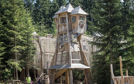 Království lesa je plné atraktivních domečků z akátového dřeva.