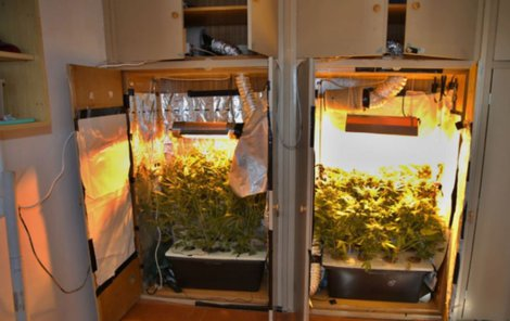 Marihuanu pěstoval ve dvou skříních.
