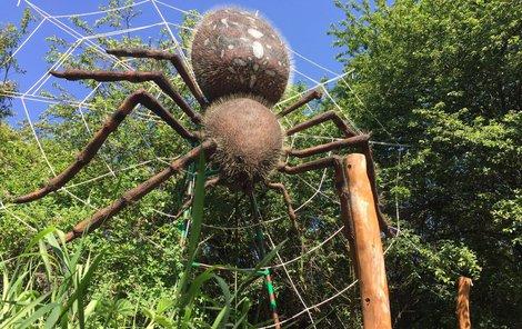 Podívejte se do světa hmyzu v Chlumci nad Cidlinou!