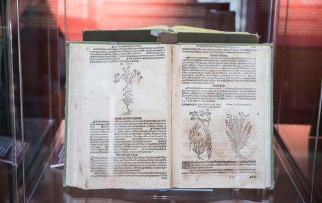 Český překlad slavného Mattioliho herbáře z poloviny 16.století.
