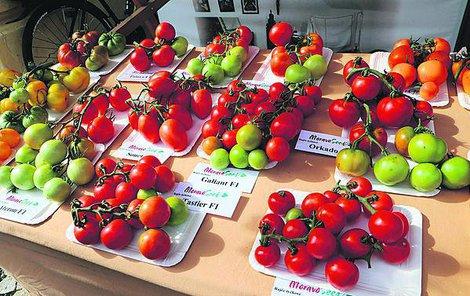 Slavnosti rajčat v Břeclavi představily známé i méně známé odrůdy rajčat.