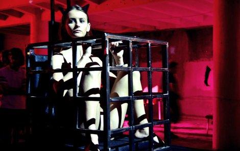 Výstava je laděna do BDSM tématiky
