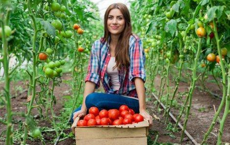 Věděli jste, že tepelně upravená rajčata jsou v lecčem zdraví prospěšnější?