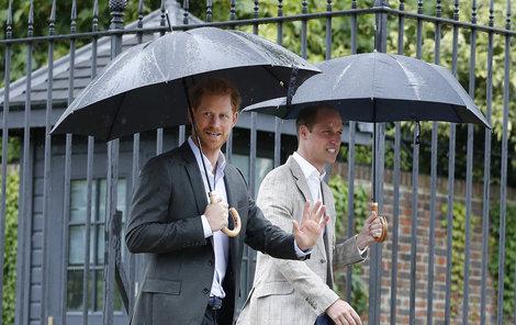 William a Harry se se smrtí maminky stále nesrovnali.