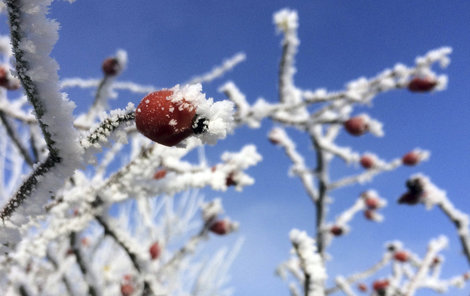 Na Šumavě sněžilo!
