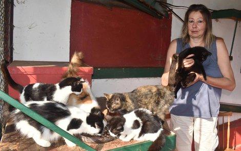Agata Grey pomáhám kočkám, které už nikdo nechce.