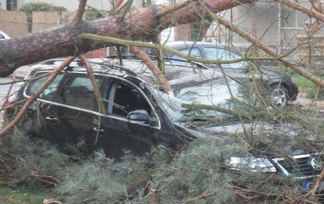 Škody způsobené větrem v Hradci Králové na Slezském Předměstí
