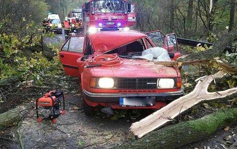 Strom spadl na starší škodovku. Posádka skončila v nemocnici.